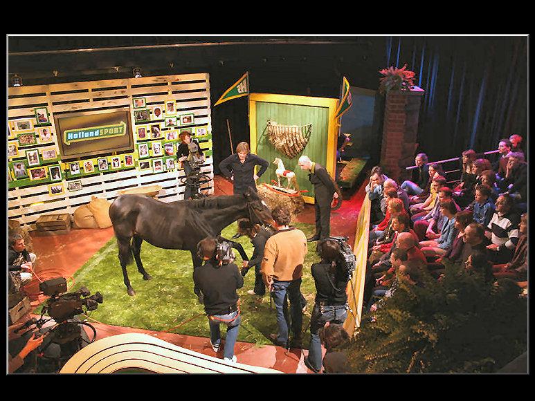 Doos 76 Foto 1516. Paard bij 'Holland Sport'