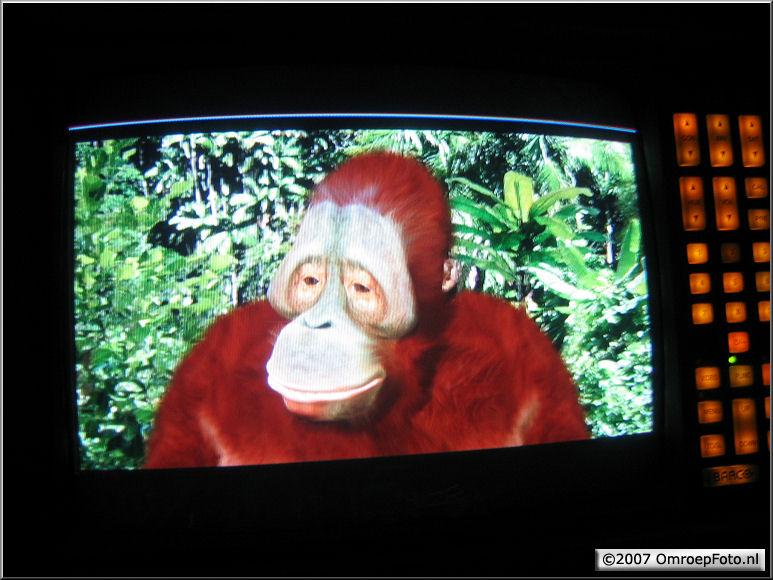 Doos 86 Foto 1711. Jungle Jury. Jurylid Bennie
